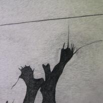 Cableado y ramas